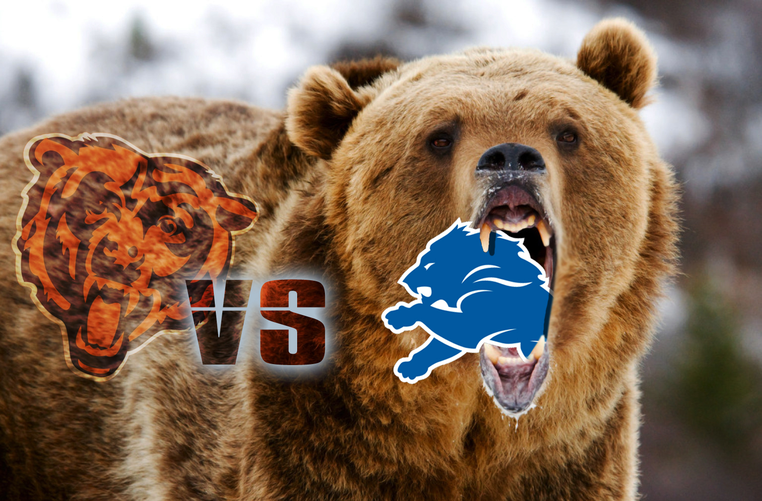 NFL NFC North Division Game